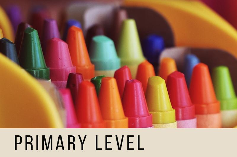 primary level